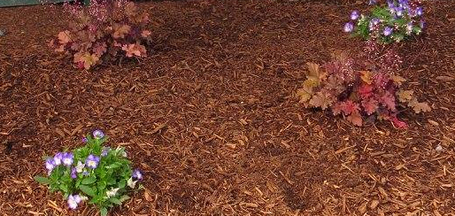 Brown mulch installed into flower bed garden, mulch delivery