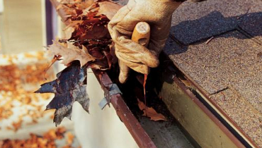 gutter cleaning fall clean up services